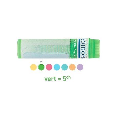 Nux moschata 5CH 9CH 15CH 30CH Globules Dose HOMEOPATHIE BOIRON