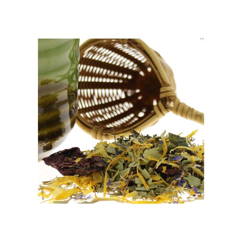 Infusion amincissante plantes medicinales en tisane soin for Tisane amincissante