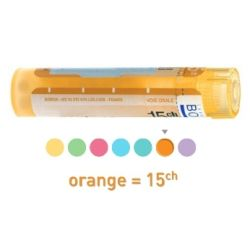 15CH Granules Tube HOMEOPATHIE BOIRON