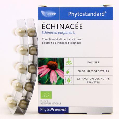 PHYTOSTANDARD ECHINACEE BIO 20 GEL PHYTOPREVENT EPS