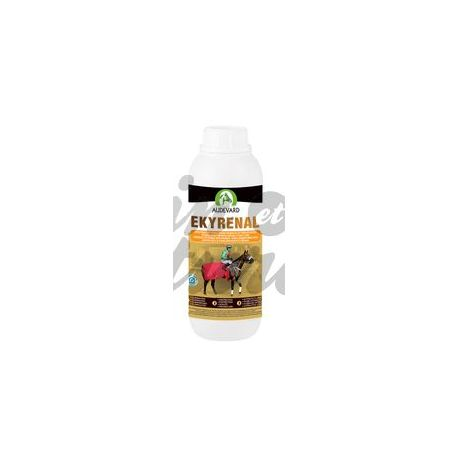 AUDEVARD EKYRENAL SOLUTION BUVABLE 1000 ML