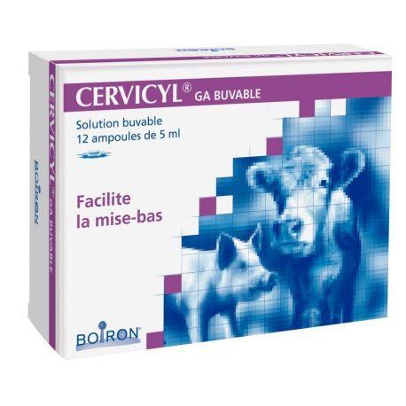CERVICYL GA BOIRON BUVABLE 12 AMPOULES DE 5 ML