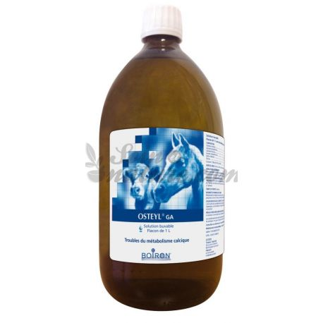 OSTEYL GA ORALE LÖSUNG Bottle 1L