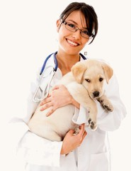 organic veterinary pharmacy online