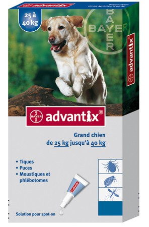 ADVANTIX DOG LARGE